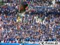 Frankreich-Irland-091_1